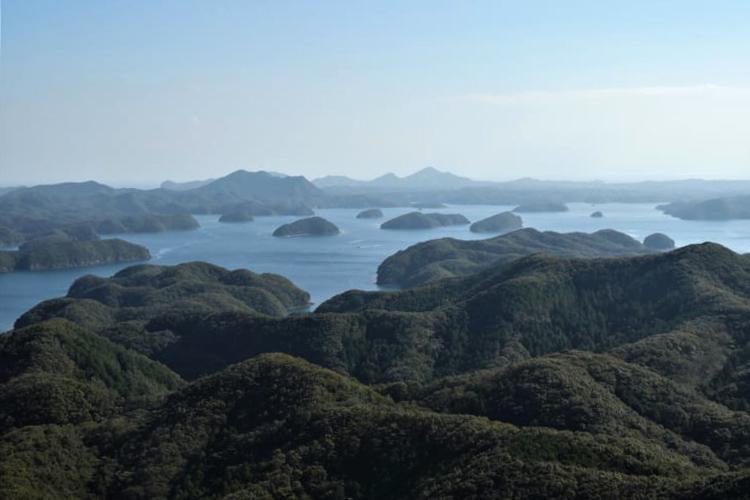 ヤマネコ、とんちゃん、砲台跡 対馬・上島を味わい尽くす