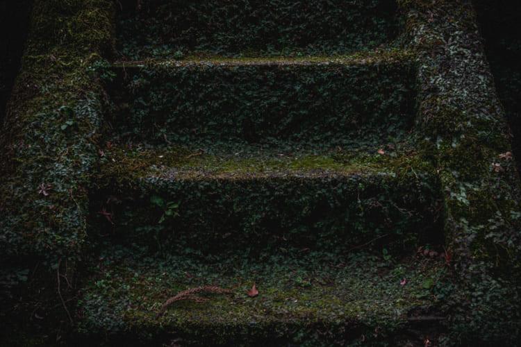 母危篤の報に巡る思い 東慶寺