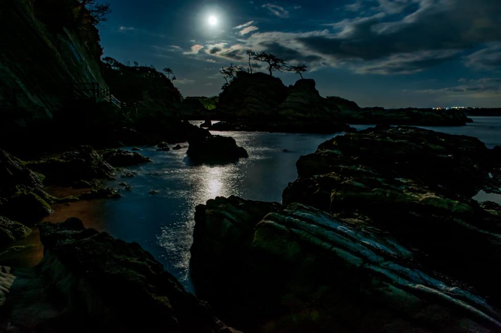月夜の磯で、癒やしのメバリング 神奈川県・三浦半島