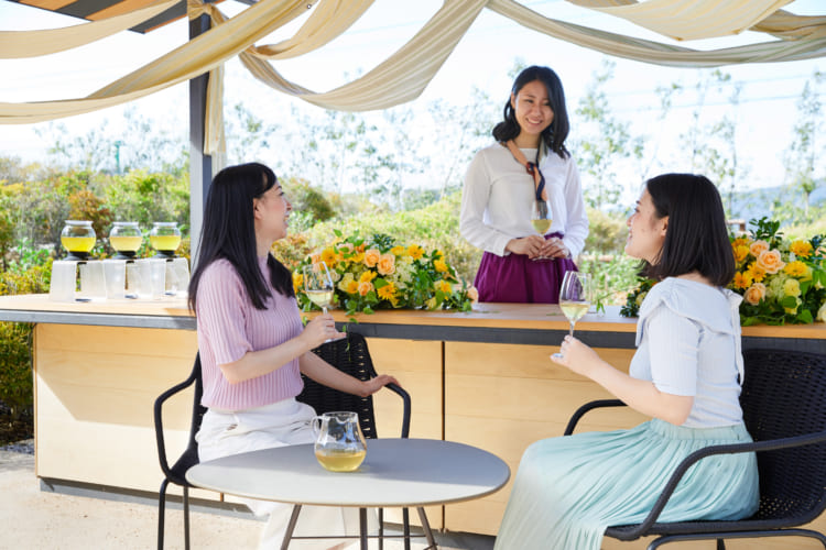 新茶の収穫を祝う宿泊プラン『新茶パーティ』。界 遠州