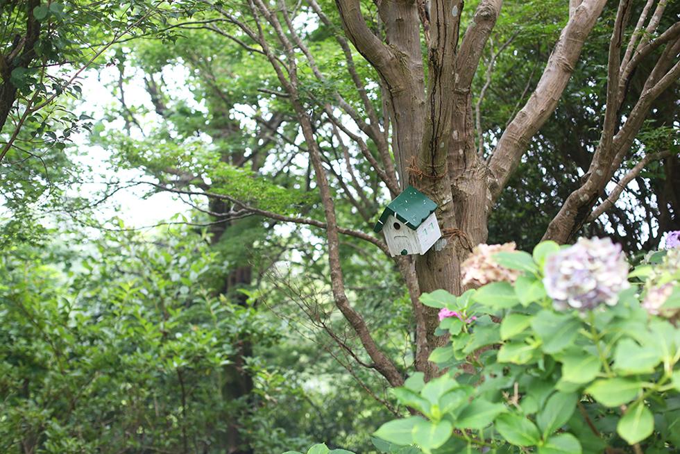 林の中に浮かぶ球体の正体は!? 沼津市のモダンな大人の林間学校「INN THE PARK」