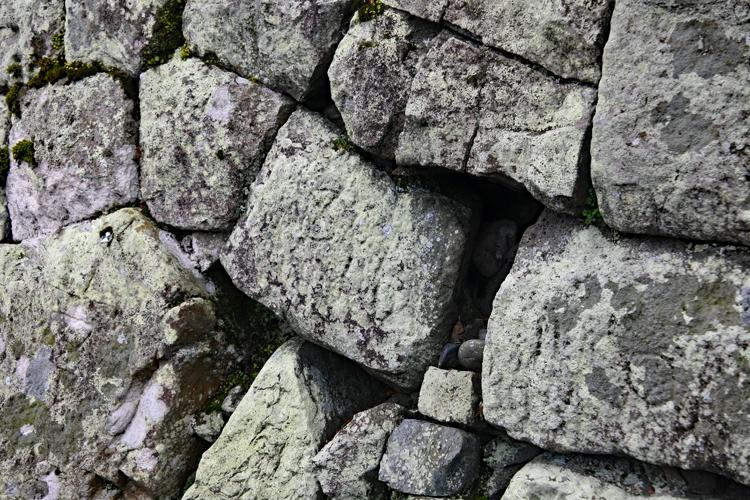 波紋のように広がる美しく希少な「輪郭式」 駿府城(3)