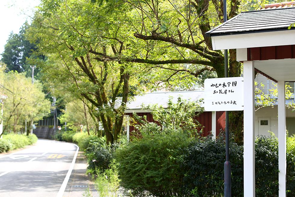 「やさしいことはつよいのよ」 宮城まり子さんの温かさに触れた、「ねむの木学園」への旅