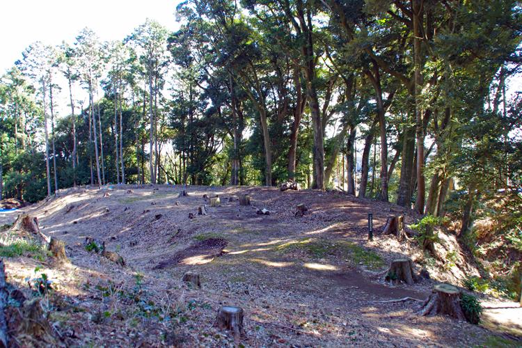 武田の城か徳川の城か 教科書的な「丸馬出」が残る名城 諏訪原城