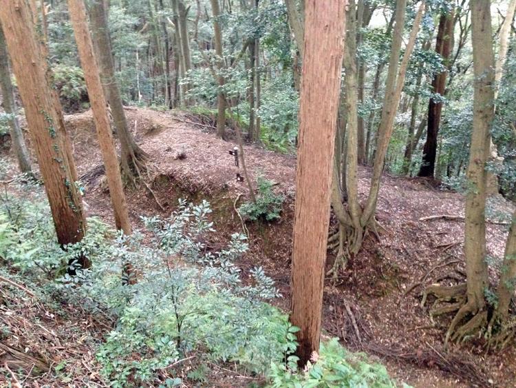 山麓まで続く竪堀 緻密でダイナミックな設計に悶絶! 静岡市・丸子城