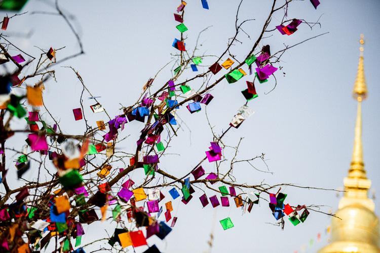 木の枝にキラキラ輝く折り紙 ナーン