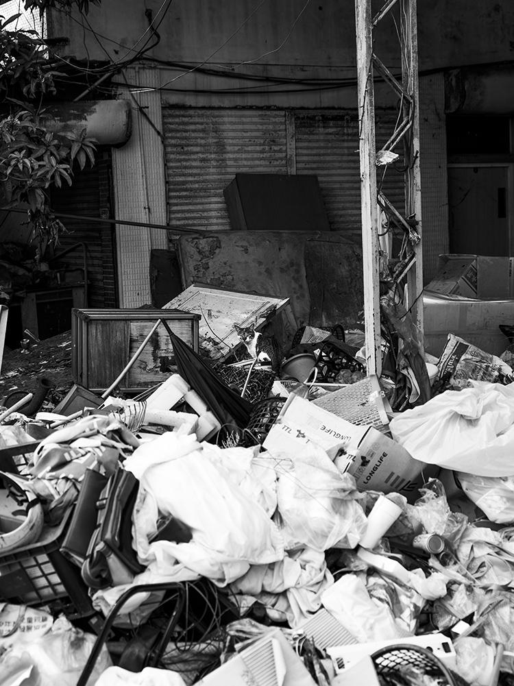 (68) ひょっこり現れた小さな命 永瀬正敏が撮った台湾