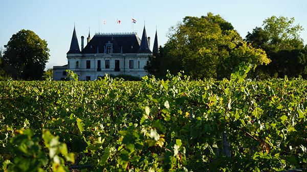 左岸は洗練、右岸は優美 ボルドーの銘醸ワイン探訪