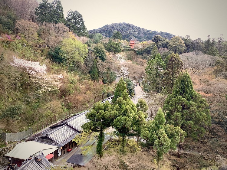 清水山(音羽山)