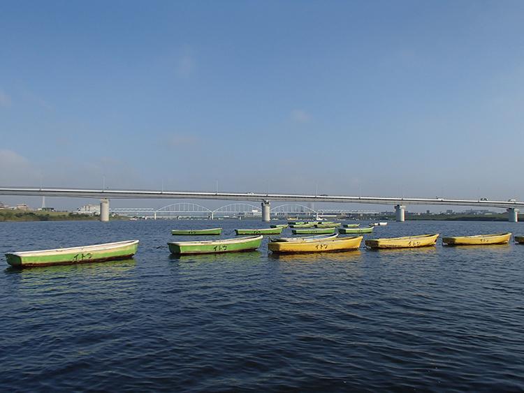 手こぎボートでのんびり 秋の気配に竿を出す 千葉県・江戸川放水路のマハゼ釣り