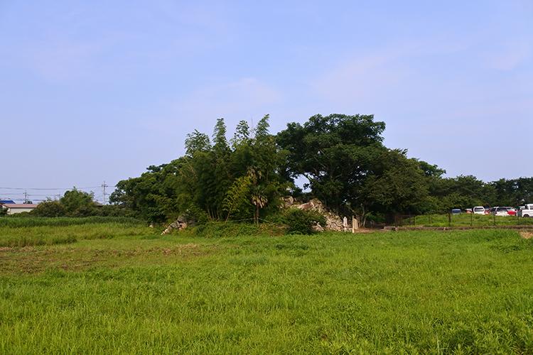光秀の居城・坂本城と、「琵琶湖ネットワーク」の一翼を担う大溝城