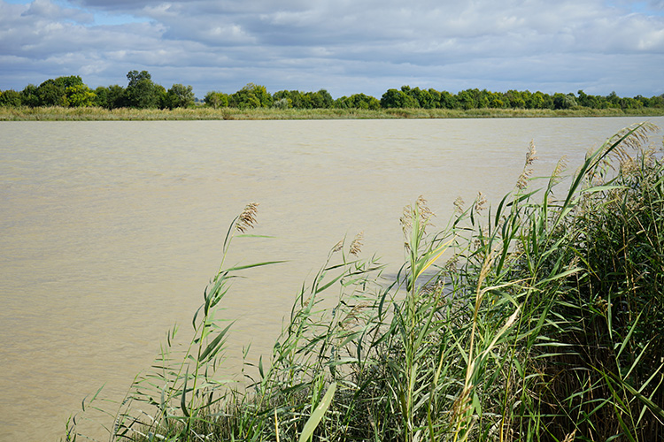 世界的な銘醸地に押し上げた川由来の小石と砂 (6) ボルドーのオー・メドック