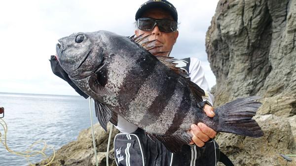 爆釣! 底物師のイシダイ釣り 島根県・隠岐諸島