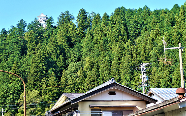 「半沢直樹」の出演者に勧めたい城下町 岐阜県郡上市