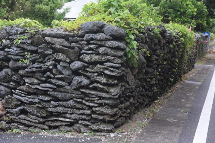 テーブルサンゴを積み重ねた石垣