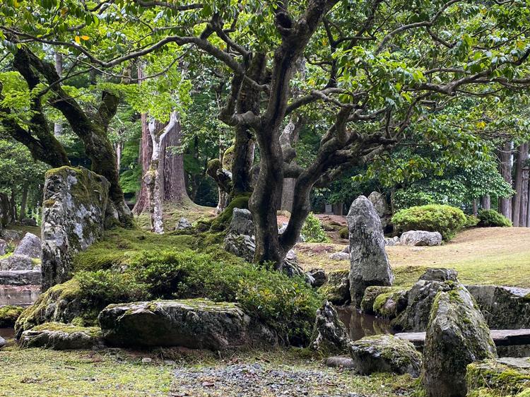 「旧秀隣寺庭園(足利庭園)」(画像提供:興聖寺)