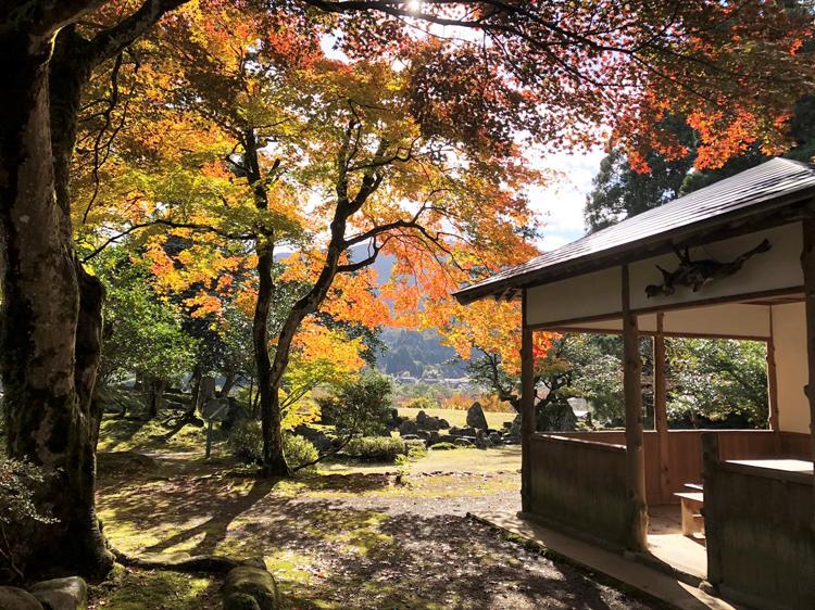 庭(画像提供:興聖寺)