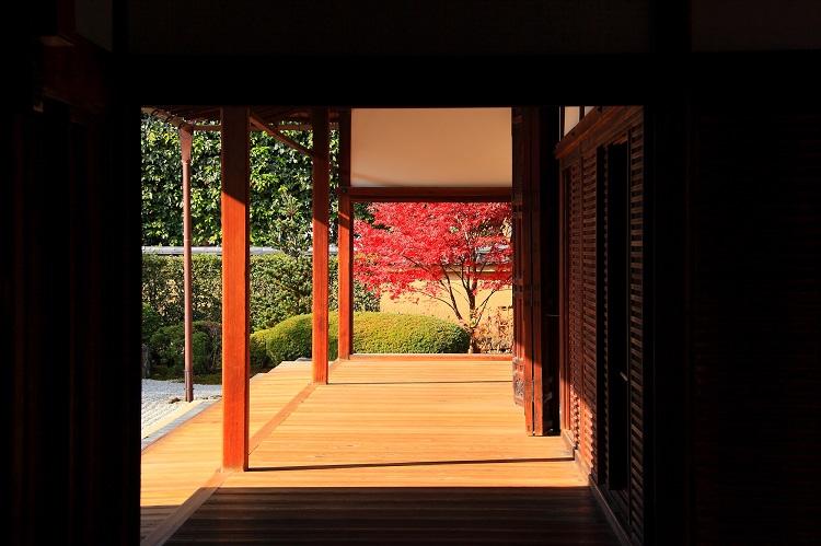 本堂をぐるりと囲む縁側を歩いて、庭園を鑑賞できる(画像=photolibrary)