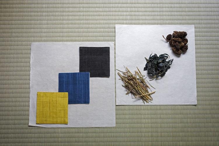 染料の一例。右上から、矢車の実、蓼藍(タデアイ)の葉、刈安(イネ科の多年草)。それぞれ黒、藍、黄に染まる