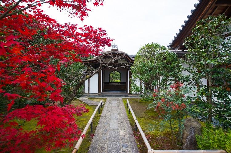 参道を進むと、「客待」の建屋の花頭窓から方丈庭園の緑がのぞく(画像=京都春秋)