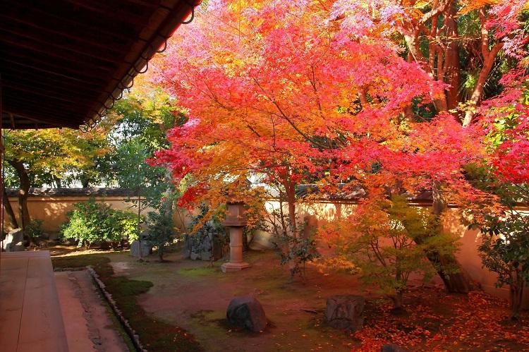 方丈庭園から右手に回り込むと、真っ赤に色づく紅葉に迎えられる(画像=photolibrary)