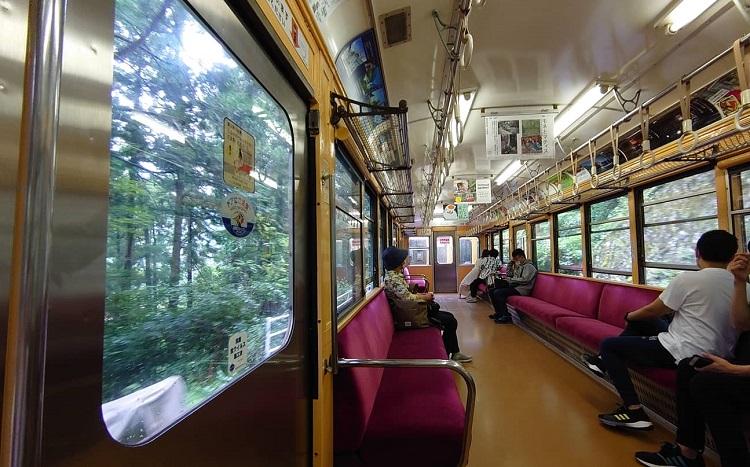 山の急斜面をゆっくり登っていく箱根登山鉄道