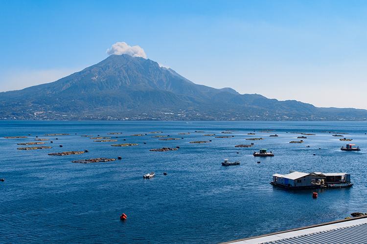 大迫力の桜島と災害の記憶 鹿児島県・竜ケ水駅