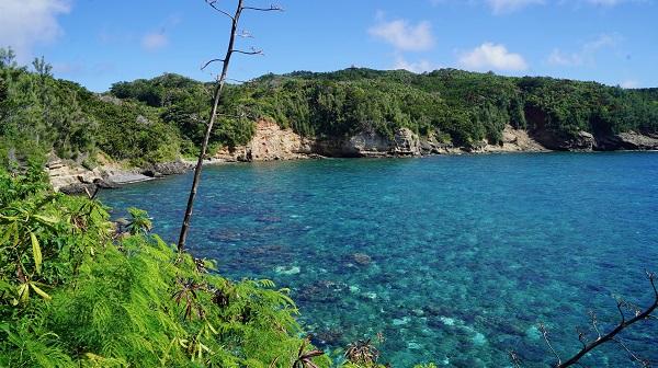 小笠原諸島12泊13日 ロングワーケーション
