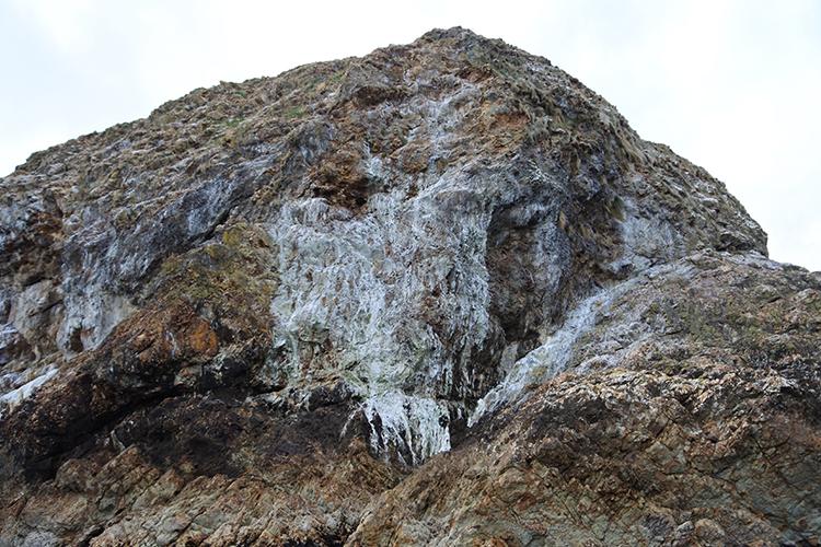 ウミウのふんで白く染まってしまった巾着岩