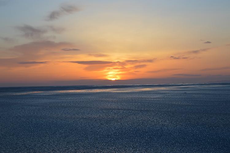 流氷を求めオホーツク海沿岸へ 冬の道東(上) 紋別~サロマ湖