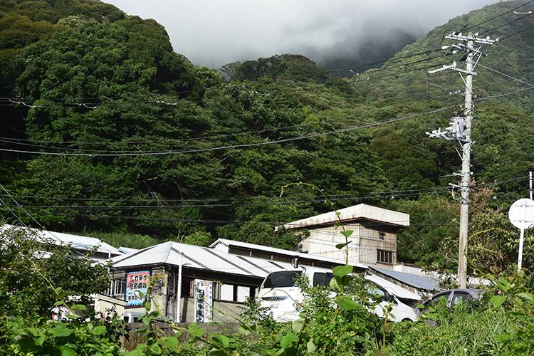 背後に緑深い山が迫る「カネサ鰹節商店」