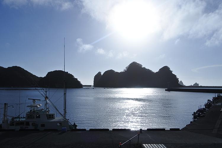 尊之島(そんのしま)が沖に浮かぶ田子漁港。水揚げされるのはタチウオやアジ、タイ類、イカなど