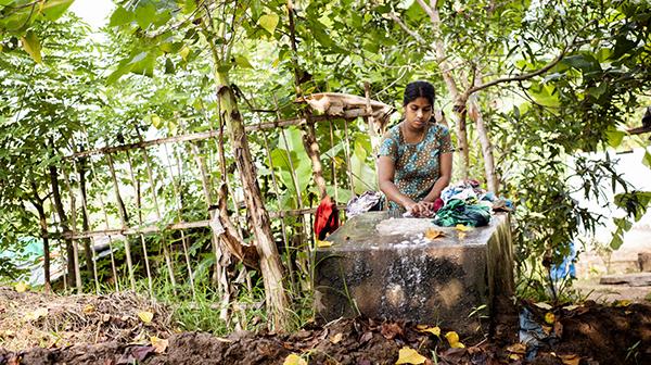 水郷地帯の木もれ日の中で インド・ケララ