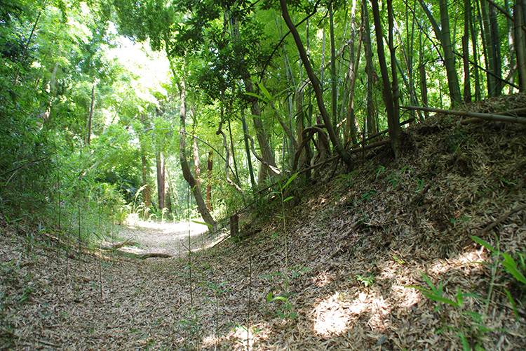 北側斜面をめぐる橫堀