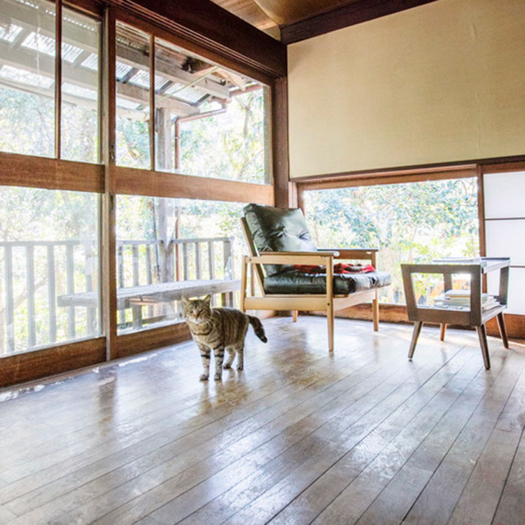 <14>猫への愛情があふれる、鎌倉の古い一軒家 ~ウーロン
