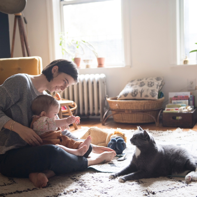 ぽっちゃり猫とアーティストの、美しくも愉快な暮らし