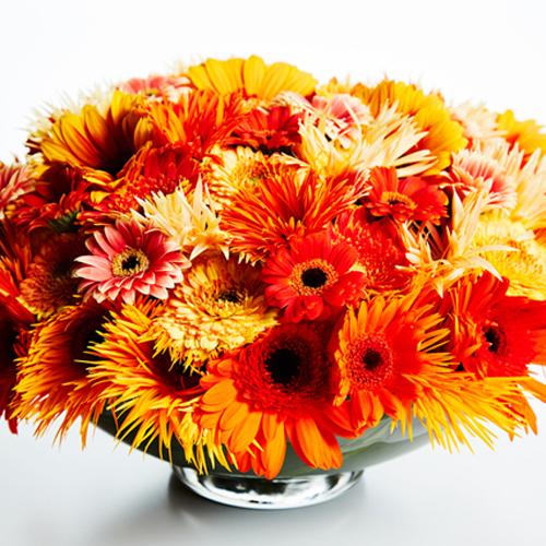 人生を左右する話や感動する話がない……。「なんとなく生きている」私に花束を