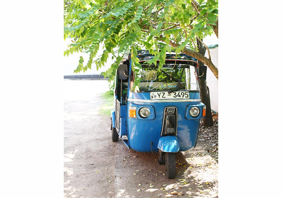 《スリランカ 光の島へ》<1>30代なかば、人生の舵をきる