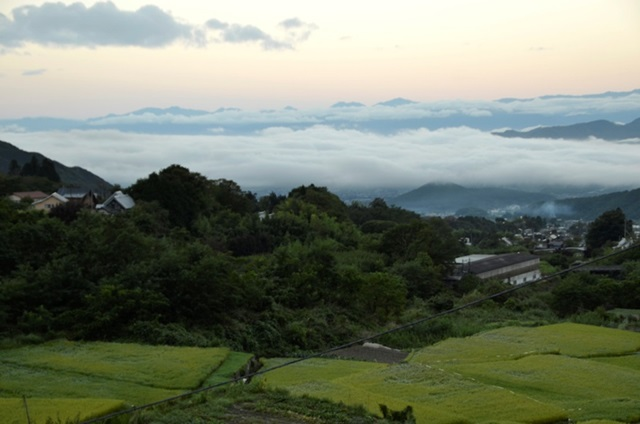 「現代人って実は暇?」山梨県で微生物と暮らす発酵デザイナー・小倉ヒラクさん
