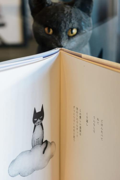 猫という生き物との不思議な暮らし 『退屈をあげる』