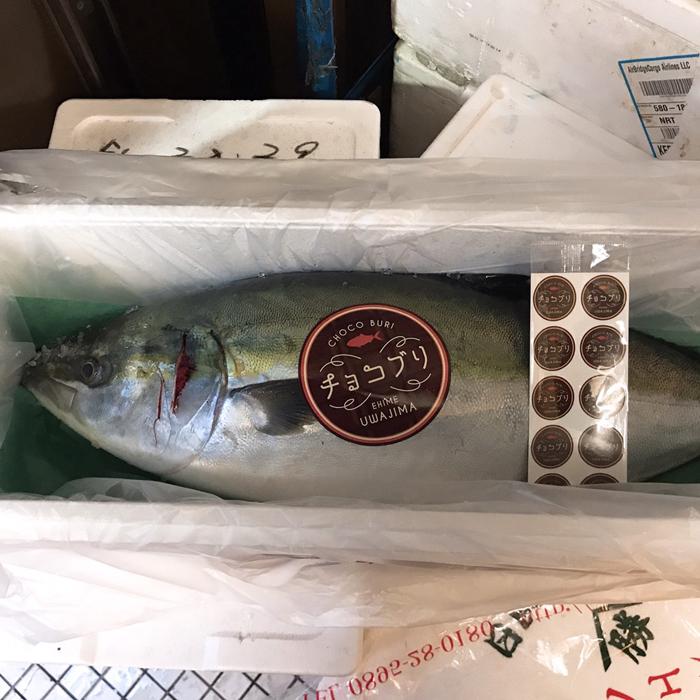 バレンタインに魚?