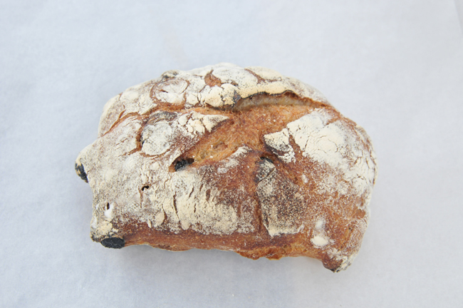 このパン:パン・ド・ロデヴ フリュイ。自家製のルヴァン種と北海道産キタノカオリ100%の生地