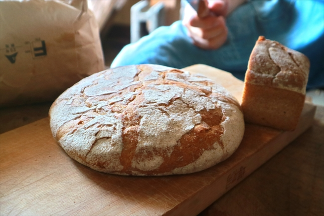 食卓にのぼったパン。ヨーロッパから持ち帰った貴重な古代小麦「プチエポートル」で焼いたもの