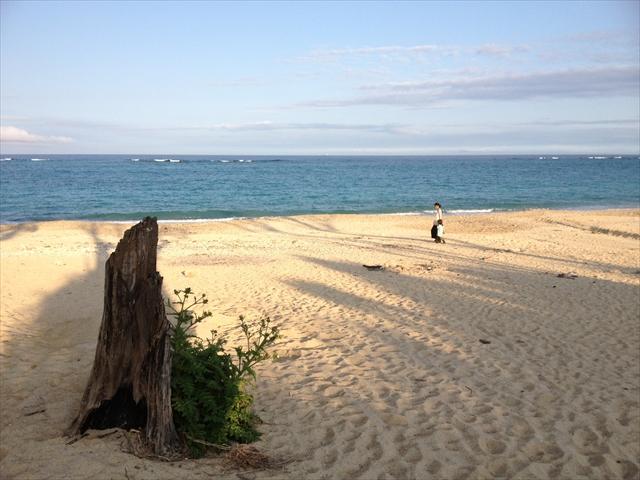 沖縄の海で、UAと