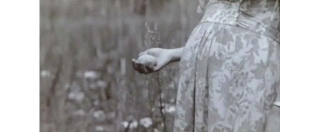映画「eatrip」から。UAさんが産みたての卵を手にとっている