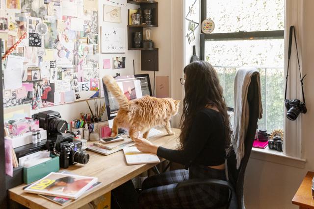 ブリジットさんがパソコンに向かって仕事をしていると、手の上やキーボードに座り、邪魔しようとします。「近くにいたいからかな」というトミーさんに、「自分の支配力を示したいからじゃない?」とブリジットさん