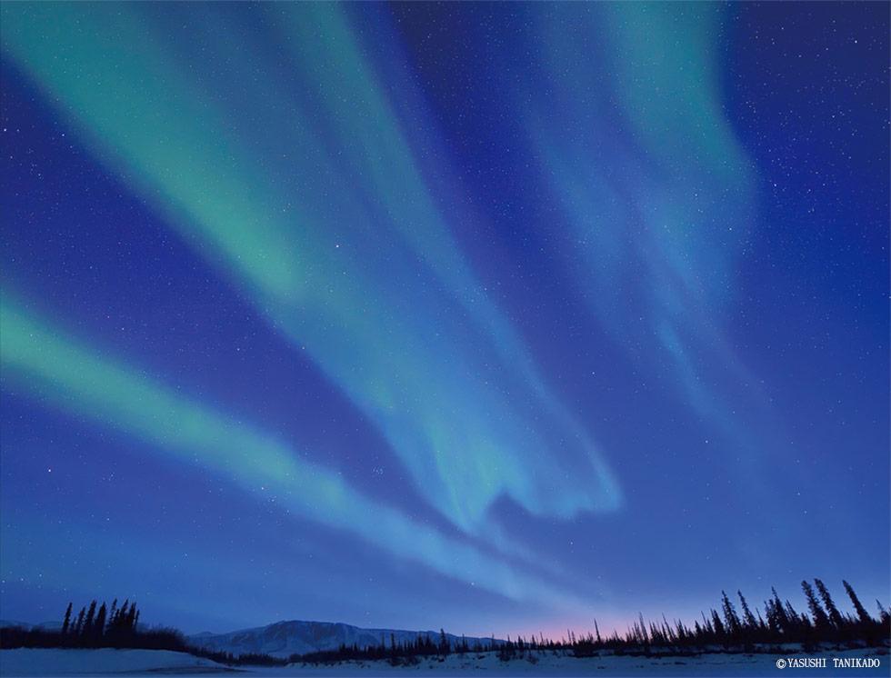 夜空を彩る光の芸術『AURORA』