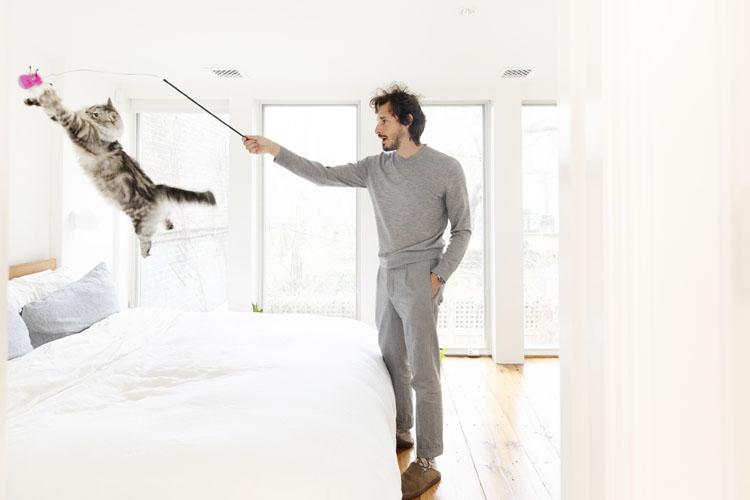 飼い主の半径1m以内で暮らす、家事見習い猫