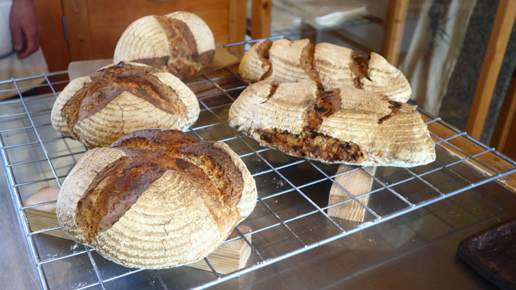 自家製の薪窯に自家製の種。自然のままに暮らす自給自足のパン屋/ビアンキュイ