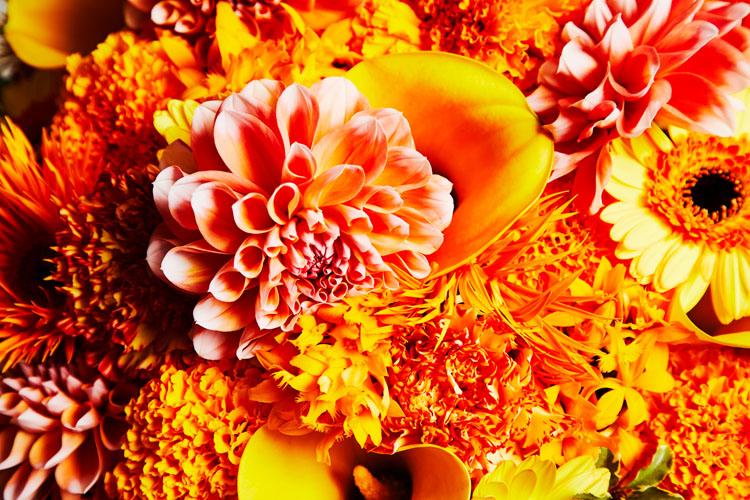 絶対好きになってはいけない恋だった……。サプライズの花束を彼に